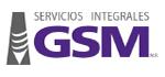 SERVICIOS INTEGRALES GSM